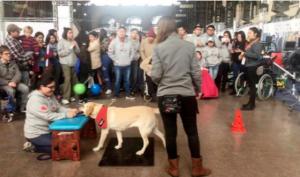 Pitanga en Expo Inclusión 2019 - Estación Mapocho
